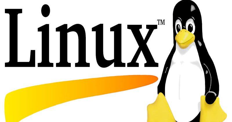 معرفی بهترین نسخه های لینوکس - خرید هاست لینوکس- شرکت هاستینگ